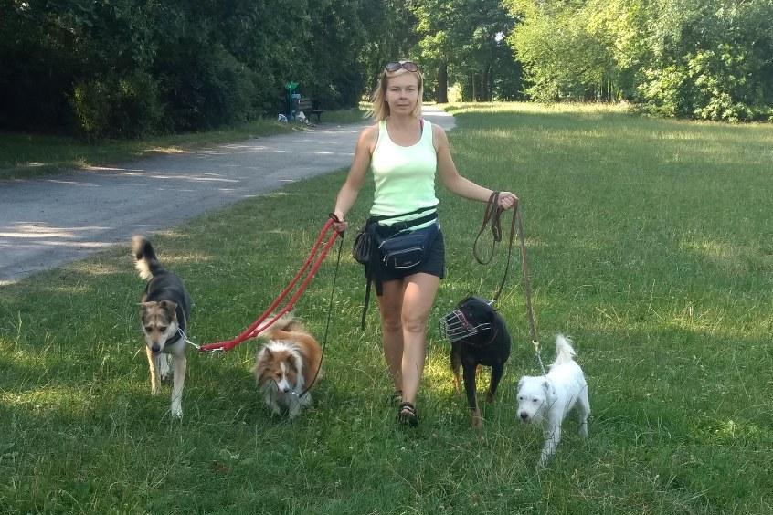 spacery (Dog Walking) z Agnieszka Wyłupek