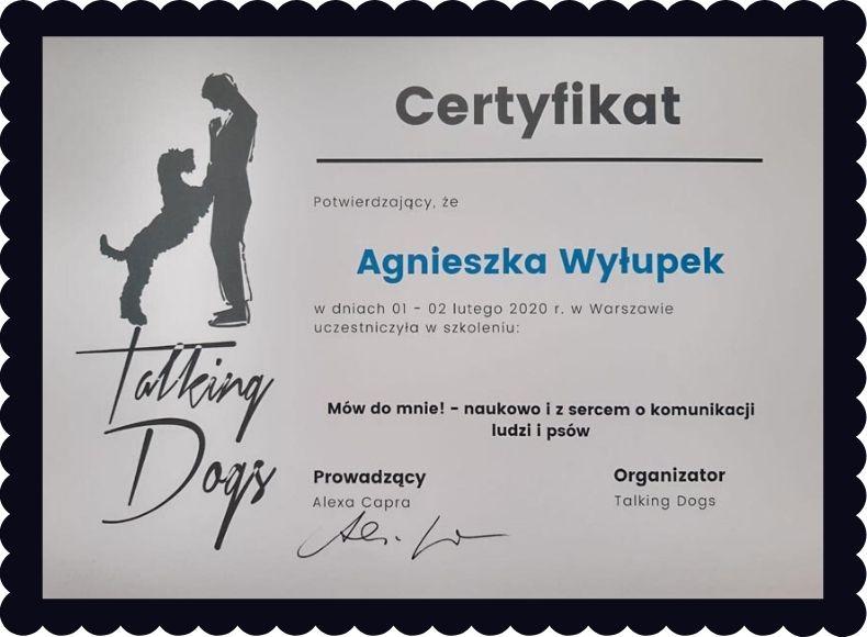 certyfikat szkolenia Agnieszki Wyłupek o komunikacji z psem